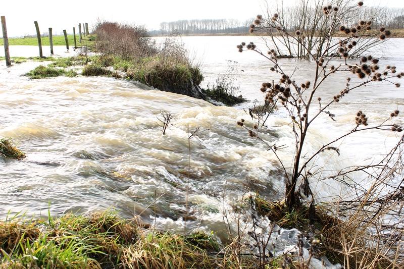het kwelwater staat hoger en loopt over in de Maas