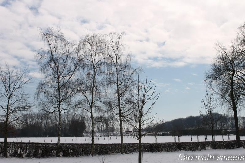 laatste sneeuw 002