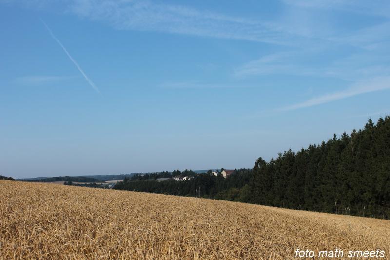Luxemburgs landschap (1)