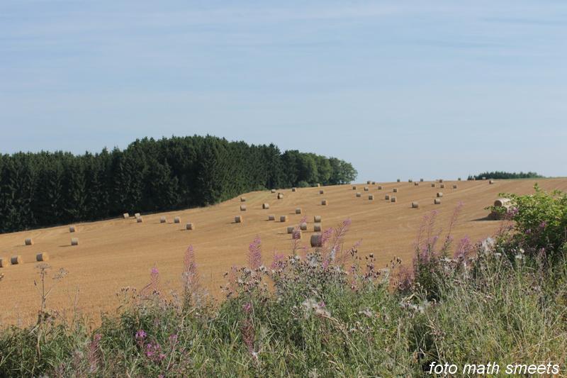 Luxemburgs landschap (3)