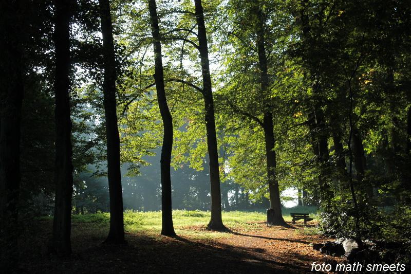 bos bij de paters 008