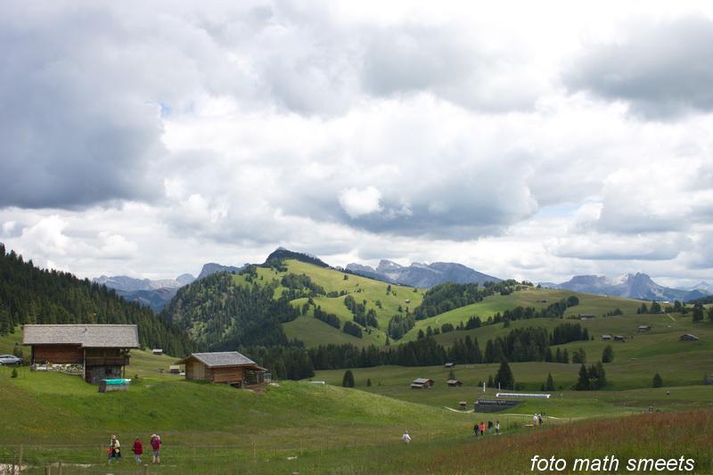 Seiser Alm (Italiaans: Alpe di Siusi, Ladinisch: Mont Sëuc) is de grootste bergweide (Alm) van Europa en ligt nabij Bolzano in Zuid-Tirol, in het noorden van Italië. De bergweide heeft een oppervlakte van 57 km² en ligt op een hoogte van 1680m tot 2350m. Samen met de berg Schlern maakt het deel uit van het natuurpark Schlern-Rosengarten. Er zijn door het hele jaar vele toeristen die naar het gebied komen. In de zomer kun je hier wandelen en in de winter is er wintersport.