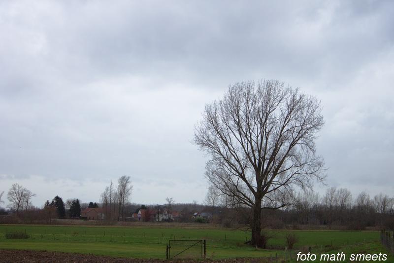 op de achtergrond ligt Mazenhoven (België)