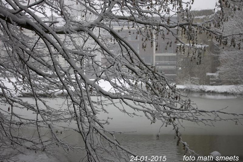 sneeuw 24-1-15  3