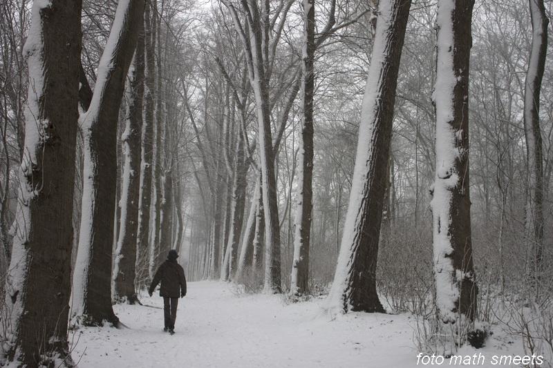 sneeuw 24-1-15  6
